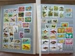 Альбом марок флора и фауна негашеные и гашеные около 640 шт. photo 2