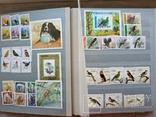 Альбом марок флора и фауна негашеные и гашеные около 640 шт. photo 3
