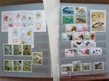 Альбом марок флора и фауна негашеные и гашеные около 640 шт. photo 4