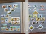 Альбом марок флора и фауна негашеные и гашеные около 640 шт. photo 5