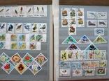Альбом марок флора и фауна негашеные и гашеные около 640 шт. photo 8