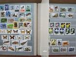 Альбом марок флора и фауна негашеные и гашеные около 640 шт. photo 9