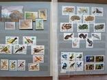 Альбом марок флора и фауна негашеные и гашеные около 640 шт. photo 10