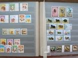 Альбом марок флора и фауна негашеные и гашеные около 640 шт. photo 11