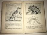 1934 Книга Коллекционера Окаменелостей Палеофаунистика Динозавры