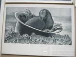 Набор открыток Скульптура и графика США, фото №8