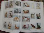 Книга Советский коллекционный фарфор Оригинал photo 8