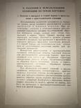 1951 Коллекция Хлопчатник Минералы и Горные Породы, фото №6