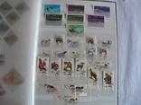 Около 200 марок и 56 сцепок,м.л., темы Фауна,флора в альбоме, фото №7