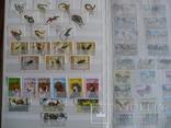 Около 200 марок и 56 сцепок,м.л., темы Фауна,флора в альбоме, фото №8