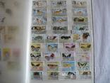 Около 200 марок и 56 сцепок,м.л., темы Фауна,флора в альбоме, фото №9