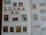 Около 200 марок и 56 сцепок,м.л., темы Фауна,флора в альбоме, фото №12