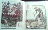 Азбука въ картинахъ Александра Бенуа., фото №2