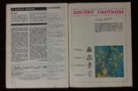 Пчеловодство №12 1974г. журнал, фото №4