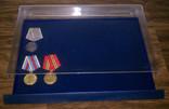 Бокс-витрина для орденов, значков, медалей - Safe Luxus. D-6460 фото 2