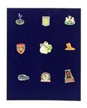 Планшет для значков, орденов и медалей Safe. D-6360SP