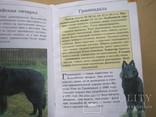 Мини-энциклопедия  Собаки, фото №9