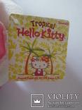 Кошечка Хеллоу Китти Hello Kitty 33см, фото №3
