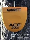 АСЕ 300 i