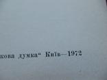 """М. Шубравська """"Яворницький"""" 1972р., фото №3"""