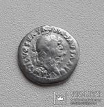 Веспасиан., фото №3
