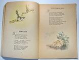 Стихотворения А.А.Фет фото 4