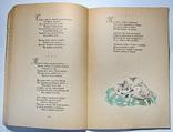 Стихотворения А.А.Фет фото 5