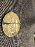 Знак легіону Сушка ( Військові Відділи Націоналістів) photo 3