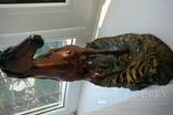 Лошадь Глазурь, фото №7