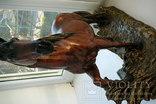 Лошадь Глазурь, фото №8