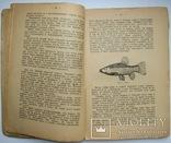 1928  Спутник рыболова-удильщика. Рождественский, Н., фото №8