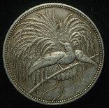 Германская Новая Гвинея 5 марок 1894 серебро