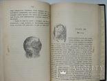 1903 Анненская А.Н. Зимние вечера. Рассказы для детей