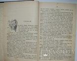 1903  Анненская А.Н. Зимние вечера. Рассказы для детей, фото №9