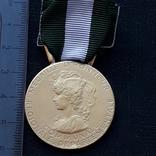 Региональная, Ведомственная, Коммунальная Почётная медаль, Франция, серебро, 20+ грамм photo 1