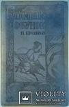 1935  Конек горбунок  П.Ершов рис.худ. Е.А.Крутикова, фото №3