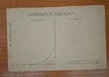 1920-е, Крым,Алупка, Рыбачья пристань, фото №3