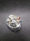Орден Боевого Красного Знамени РСФСР №3928, фото №2