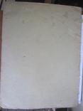 Э. Геккель Красота форм в природе ( обложка 28х37 см.  ), фото №5