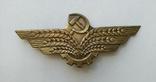 Знак на фуражку Хлебной инспекции СССР