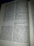 1988 Античные древности Северного Причерноморья - 1900 экз., фото №12