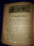 1918 Огієнко - Українська культура, фото №5