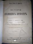 1900 История славянских литератур