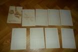 Набор открыток Уральские сказы . П.П.Бажова открытка 8 штук, фото №5