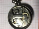 Швейцарский Шагомер, фото №5