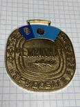 Медаль(3), фото №2