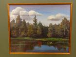 В.Веденисов. Лесное озеро, фото №3