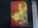 Стерео открытка 3Д СССР- Розы, фото №2