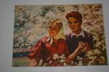 Соцреалізм. Молодість. 1958. Худ. Крисаченко photo 1