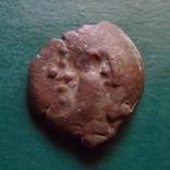 Пантикапей   (2.3.14)~, фото №2